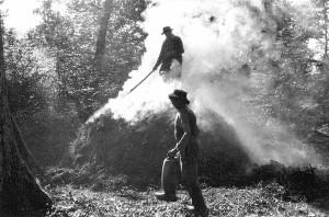 Carbonai-e-del-loro-mestiere-di-fare-il-carbone